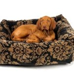 bolster bed pix for bed styles page